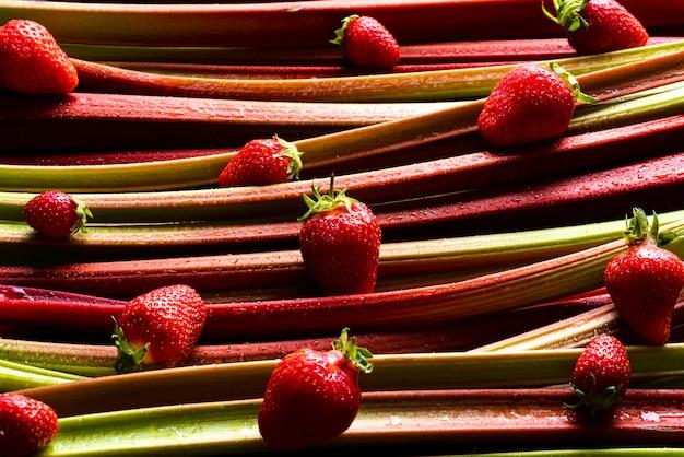 Ruibarbo y fresas