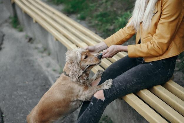 Ruido y estilo vintage. niña con perro camina en el parque y disfruta del hermoso día de verano
