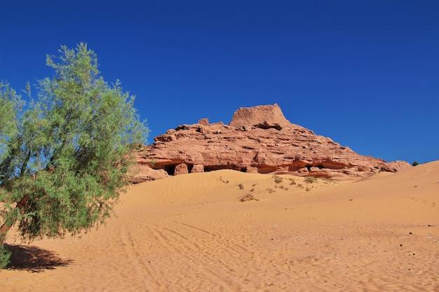 Ruinas de la ciudad abandonada de timimun en el desierto del sahara, argelia