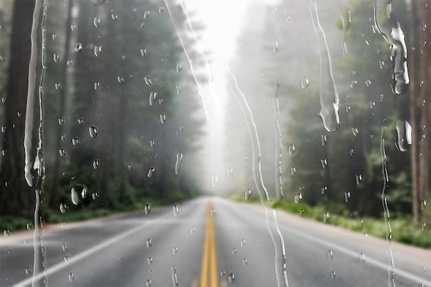 Ruta natural a través de la ventana con gotas de lluvia.