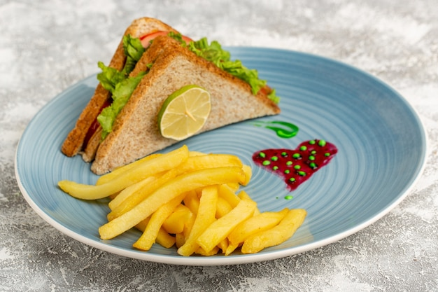 Sabrosos sándwiches con ensalada de tomates verdes junto con papas fritas en azul