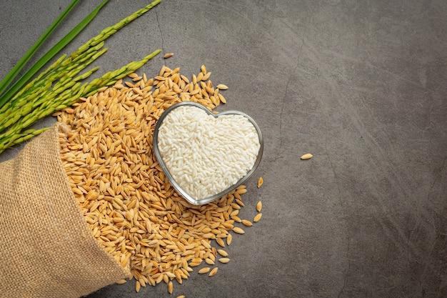 Un saco de semillas de arroz con arroz blanco en un tazón de vidrio pequeño y una planta de arroz