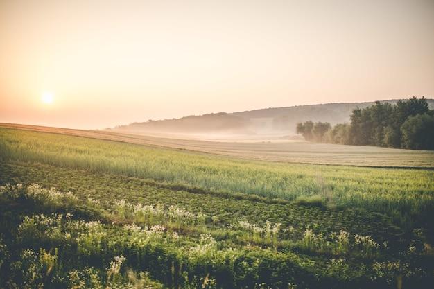 Salida del sol sobre tierras de cultivo
