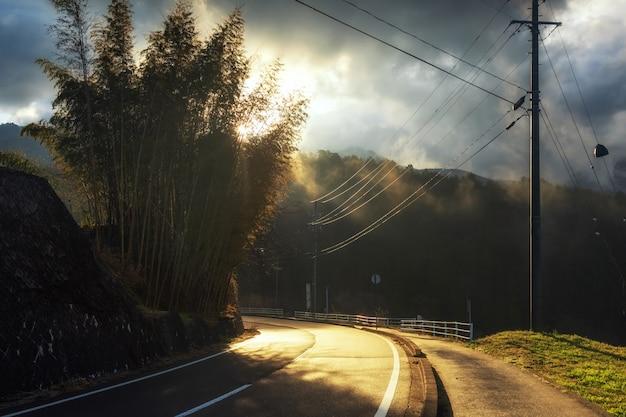 Salida del sol a través de la calle cuesta arriba y árboles de bambú