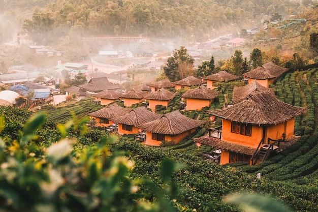 Salida del sol en el vino lee rak thai, asentamiento chino, mae hong son, tailandia