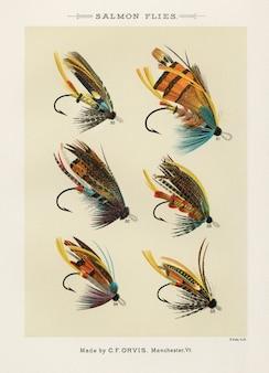 Salmon vuela de sus moscas favoritas y sus historias por mary orvis marbury.