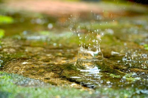 Salpicadura de agua gota en mini estanque. hermoso fondo natural. sentirse fresco.