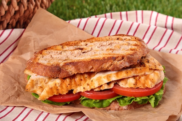Sándwich de pollo asado de cerca Foto gratis