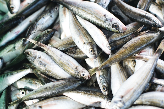 Sardinas en el mercado de pescado aéreo