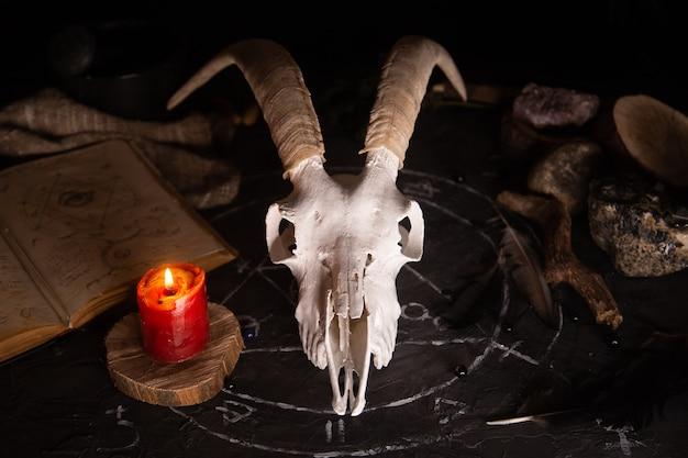 Scull de cabra blanca con cuernos, libro viejo abierto con hechizos mágicos, runas, velas y hierbas en la mesa de brujas.