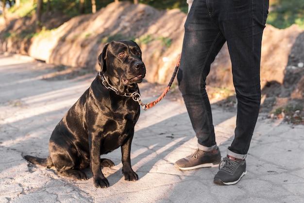 Sección baja de un hombre con su mascota.