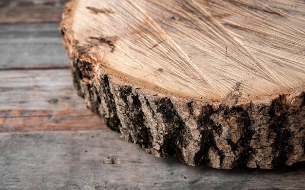 Sección transversal del gran árbol viejo sobre mesa rústica.