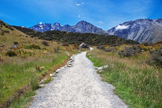 Seguimiento en el glaciar tasman, nueva zelanda,