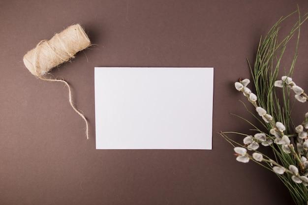Sellos de ramas de plantas y hoja de papel blanco.