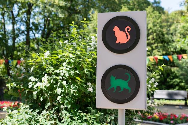 Semáforo con gatos. divertido concepto de semáforo para niños y padres en el jardín de la ciudad