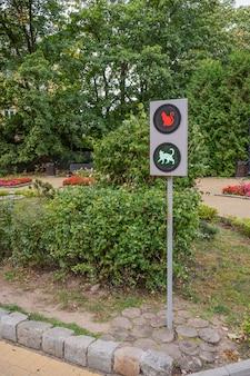 Semáforo en el parque símbolos de gatos en los emisores, zelenogradsk, rusia, orientación vertical