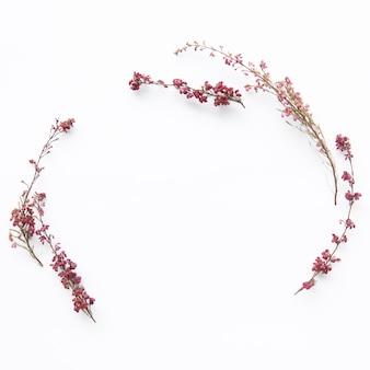 Semicírculo de flores silvestres