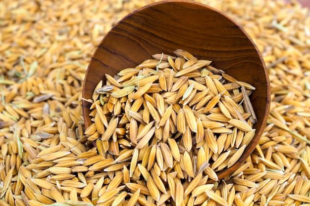 Semilla de arroz en el fondo del tazón de madera