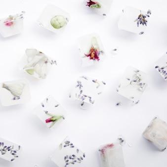 Semillas y flores en cubitos de hielo.