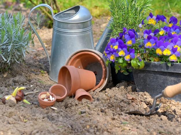 Semillas en macetas en el suelo de un jardín con flores y regadera