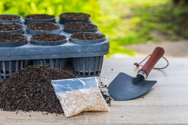 Semillas de melón en bandeja de germinación con suelo fértil oscuro.