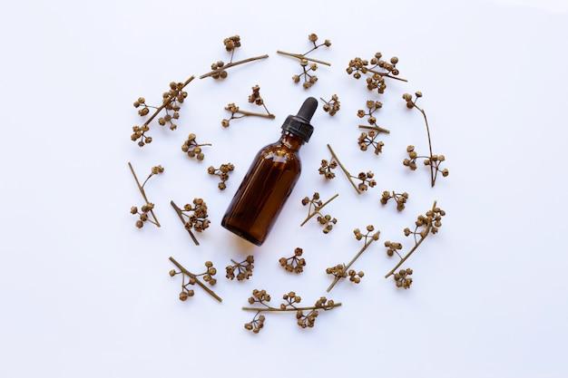 Semillas secas del eucalipto con aceite esencial en el fondo blanco.