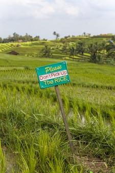 Señal de advertencia de turistas en los campos de arroz de jatiluwih en el sureste de bali