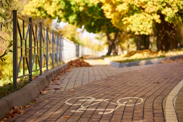 Señal de bicicleta en la carretera en el parque otoño