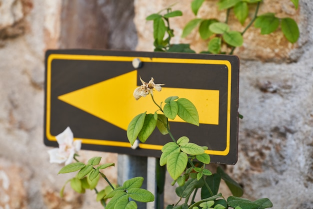Señal de orientación amarilla y plantas