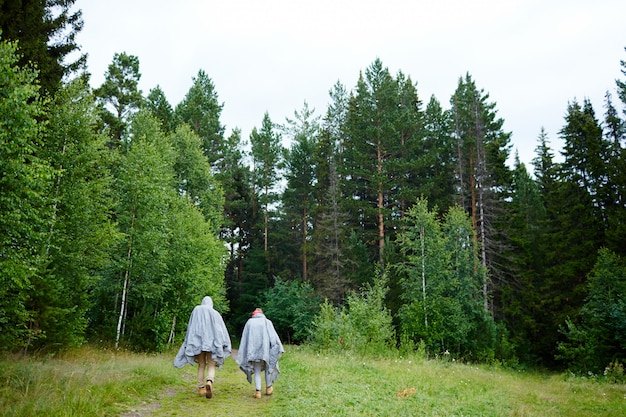 Senderismo en bosque