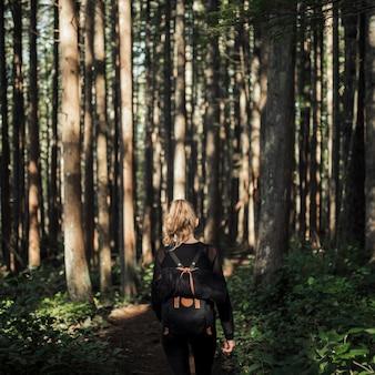 Senderismo femenino en el bosque