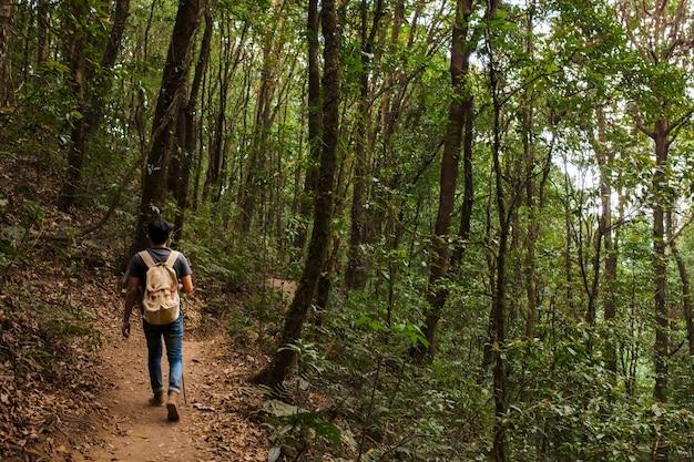 Senderista con mochila caminando por el bosque