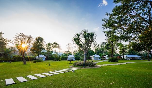 El sendero sobre césped verde y carpa en el jardín.
