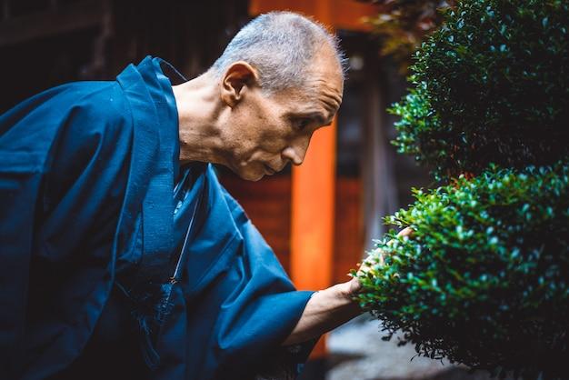 Senior hombre japonés cuidando su jardín