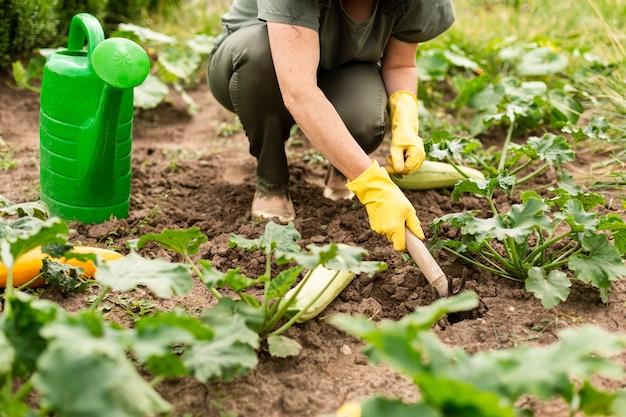 Senior mujer cuidando los cultivos