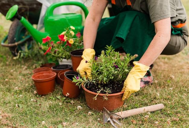 Senior mujer cuidando las flores