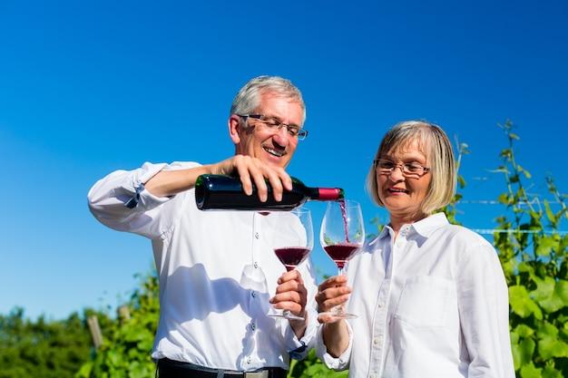 Senior mujer y hombre bebiendo vino en viñedo brindando con las copas