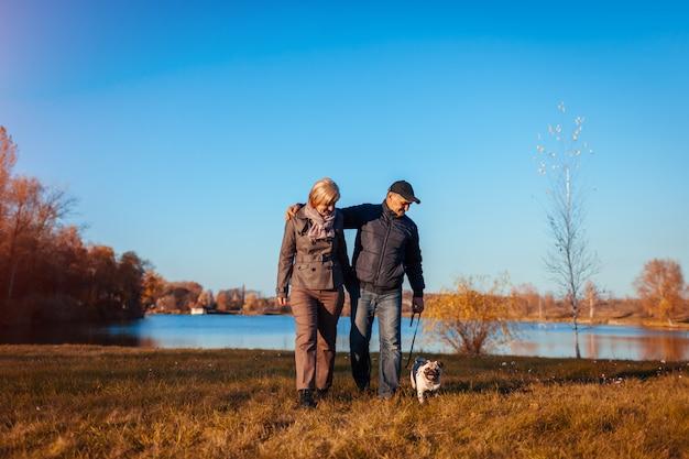 Senior pareja caminando pug perro en otoño parque por río. hombre feliz y mujer disfrutando de tiempo con mascota.