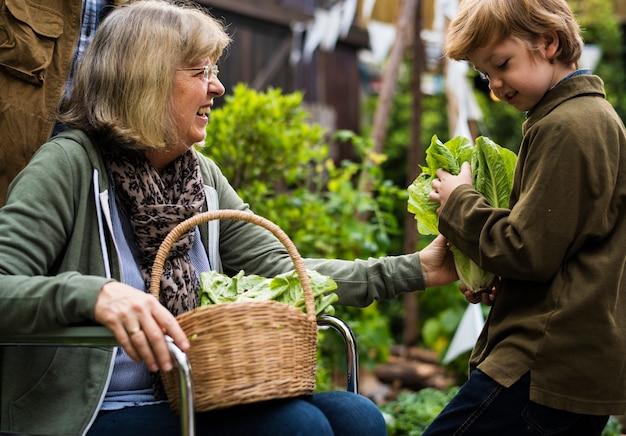 Senior pareja con niño plantando verduras en el patio trasero del jardín