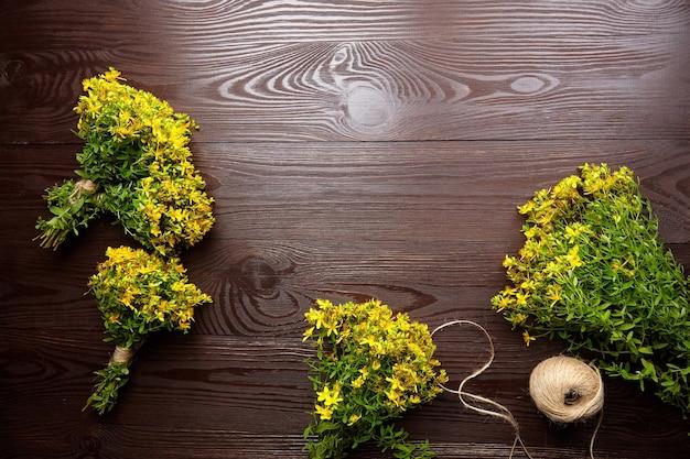 Sentar planas con hypericum perforatum o racimos de hierba de hierba de san juan, cosecha de tratamiento a base de hierbas