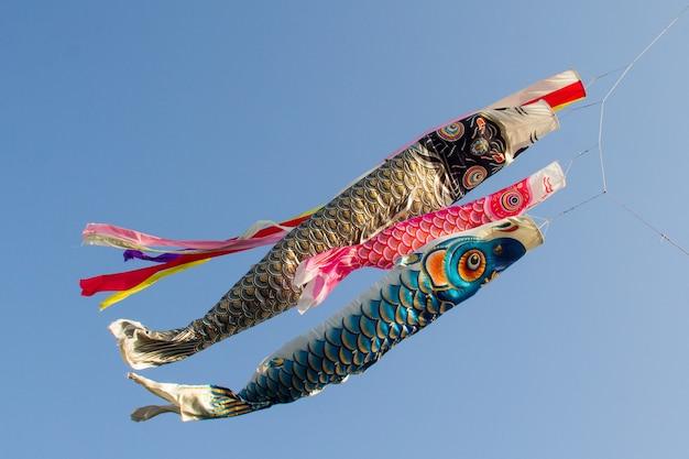 Serpentinas de carpa japonesa