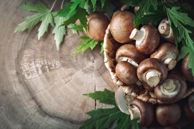 Setas marrones en una cesta en un tocón de árbol.