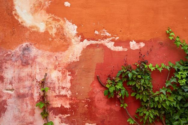 Sevilla judería barrio andalucía sevilla españa