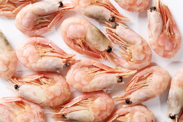 Shripms crudos aislados en blanco