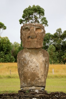 Una de las siete históricas gigantescas estatua moai en ahu akivi en la isla de pascua de chile, américa del sur