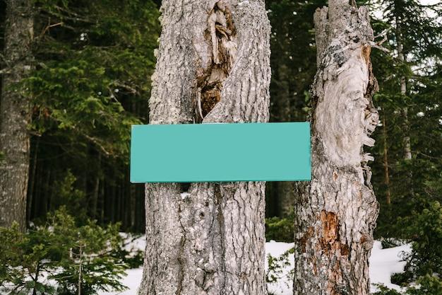 Signo horizontal en blanco sobre un árbol en un bosque de coníferas