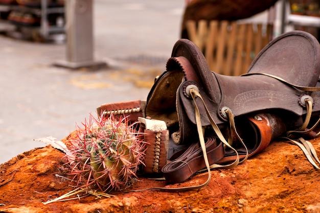 Silla de montar y cactus