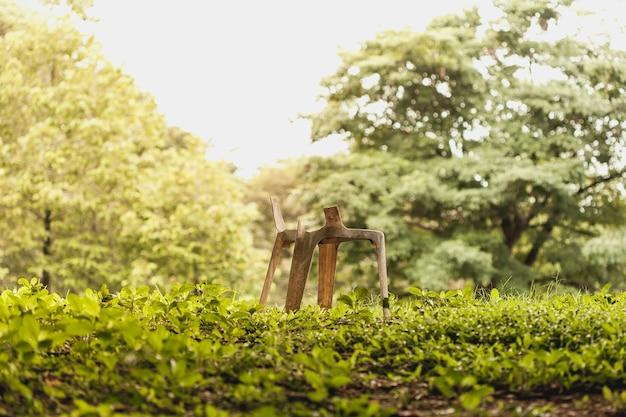 La silla rota quedó en el bosque.