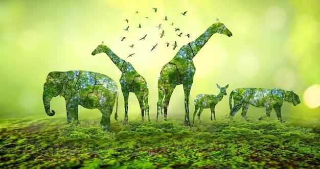 Silueta de bosque en forma de un concepto de conservación de la vida silvestre y los bosques de animales salvajes