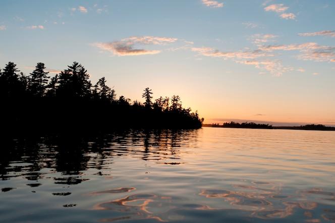 Silueta de árboles al atardecer, lago de los bosques, ontario, canadá